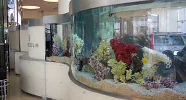 Executive Aquarium & Pond Service - Trade Shows